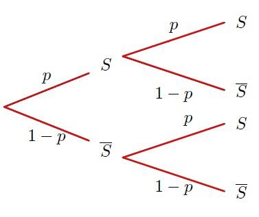 Cours de base sur la loi binomiale